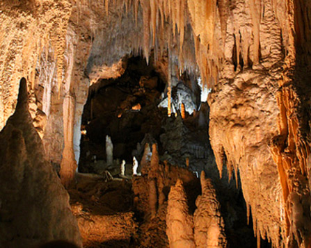 About Waitomo Caves